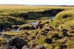 Krýsuvíkurberg Cliffs