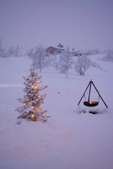 Snowshoeing in Kiruna