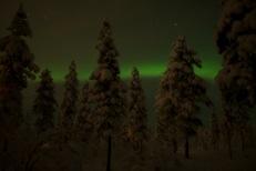 Snowmobile aurora tour