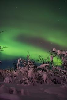 Amazing auroras over Swedish Lapland