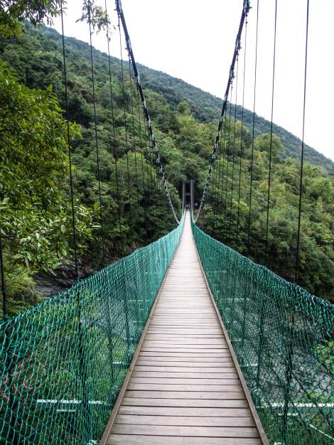 The Walami Trail
