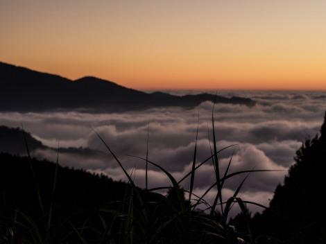 Alishan sea of clouds