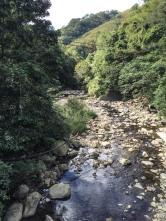 Side of road waterfall