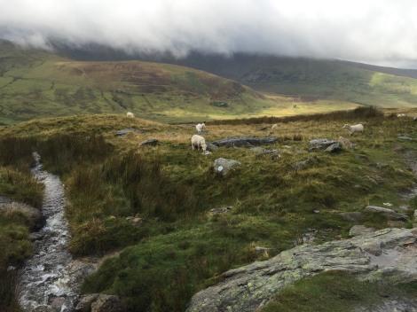 The miner's track - snowdon